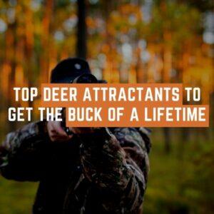 Top Deer Attractants to Get the Buck of a Lifetime in 2021