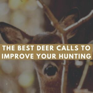 Best Deer Calls to Improve Your Hunting in 2021