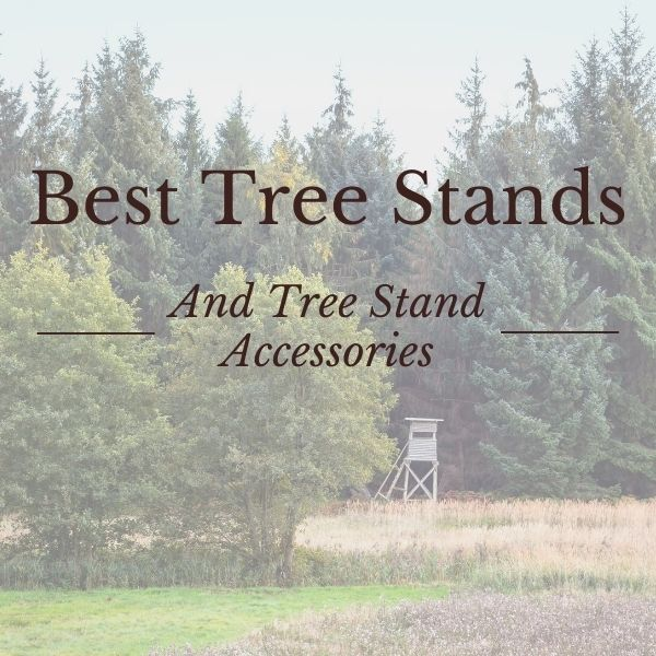 best tree stands and tree stand accessories for 2021