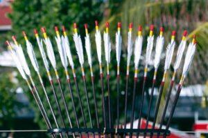 carbon arrows are the best arrows